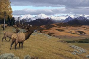 """Rocky Mountain Music"" Rocky Mountain Elk by Gary Kerby Original Oil 36"" x 48"""